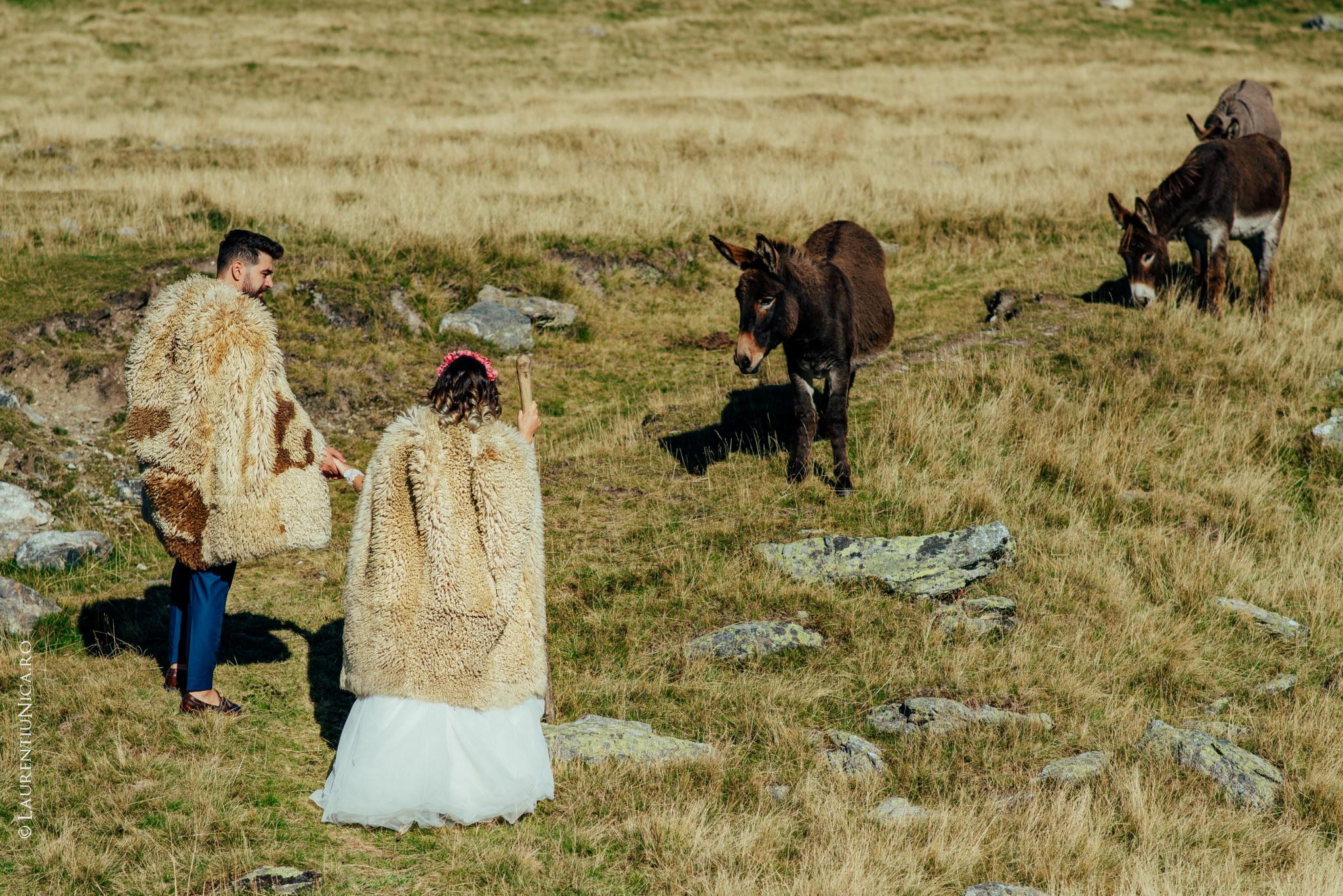 aida si alin fotograf nunta laurentiu nica transalpina 04 - Aida & Alin | Fotografii After Wedding | Transalpina - Muntii Parang
