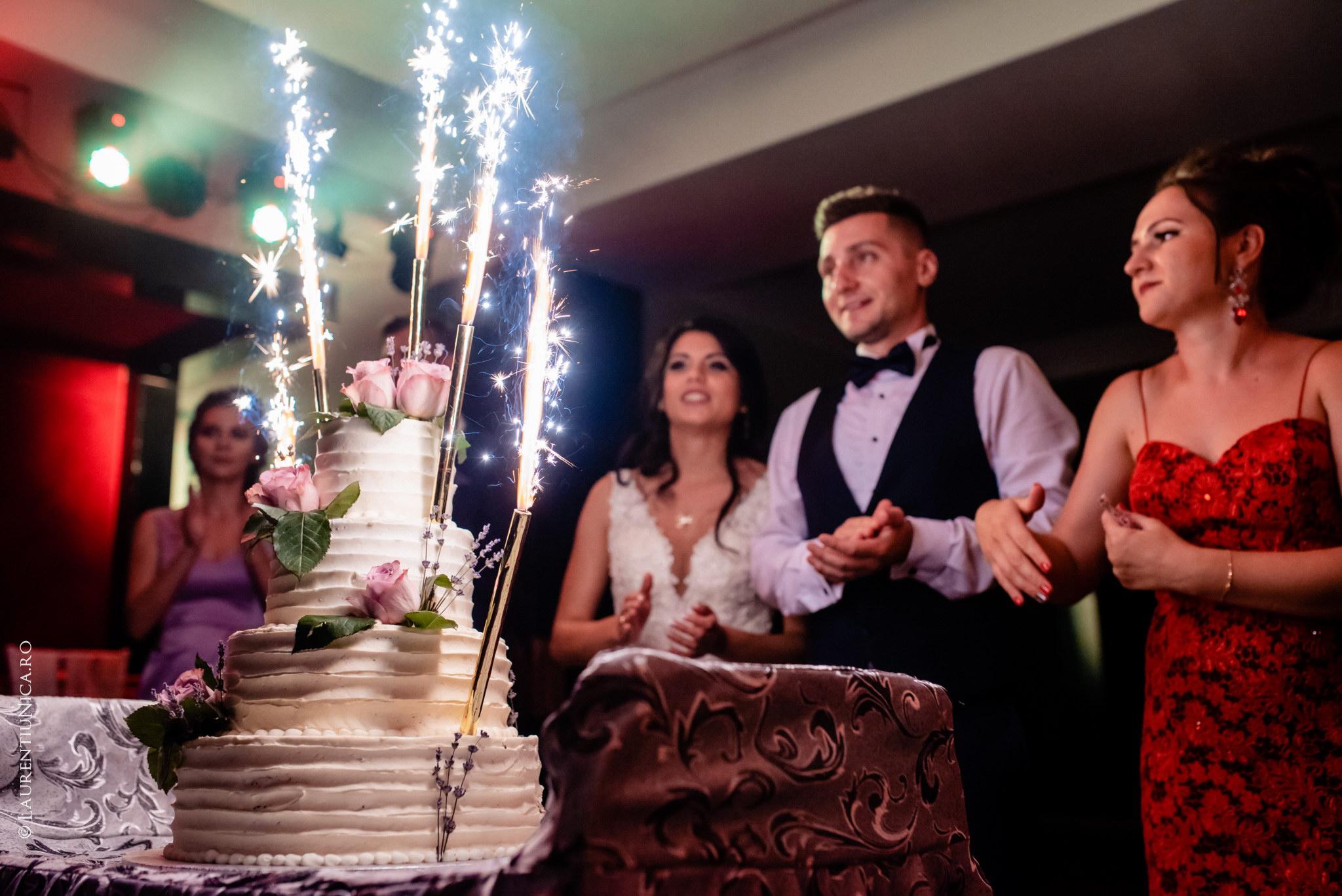 fotografii nunta craiova bia alex fotograf nunta laurentiu nica 45 - Bia & Alex | Fotografii nunta | Craiova